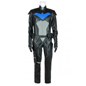 Young Justice Cosplay Nightwing Costume
